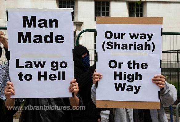 shariadfg-vi