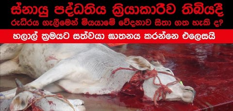 Sri-Lanka-say-NO-to-Ritual-Slaughter