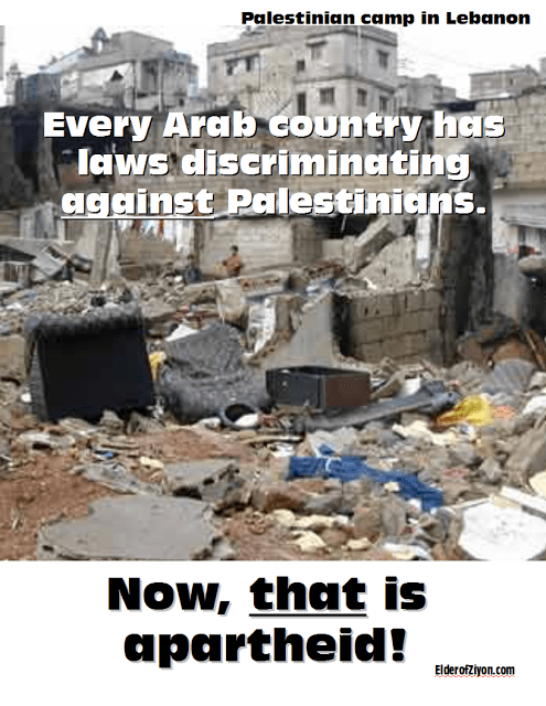 arab apartheid-1