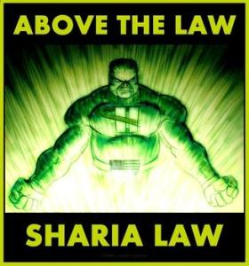 5551807356_pigman_above_the_law_sharia_law_xlarge