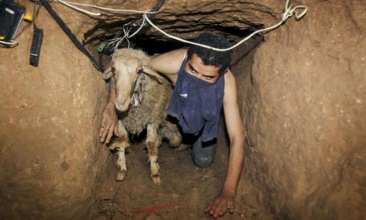 tunnel-della-striscia-184214-725x435