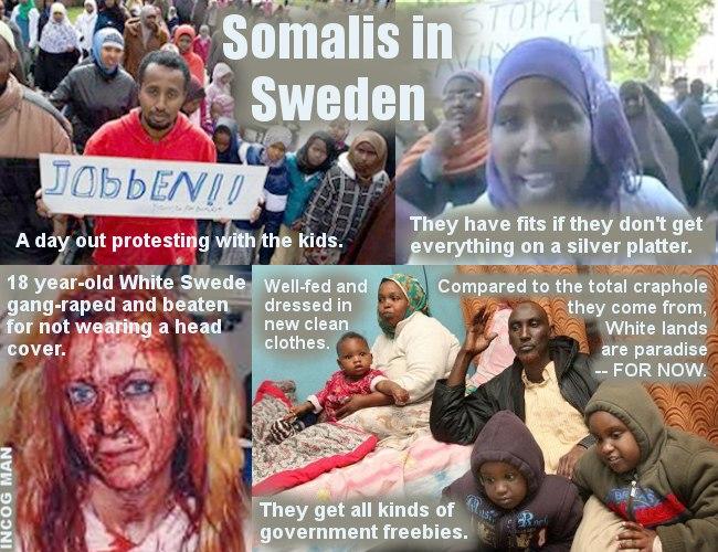 SWEDEN-SOMALIS-MONTAGE-3