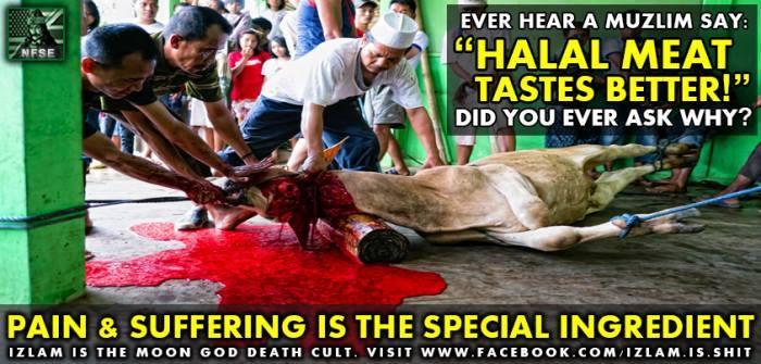 HalalSlaughter