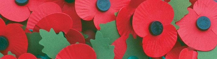 poppies_400x195