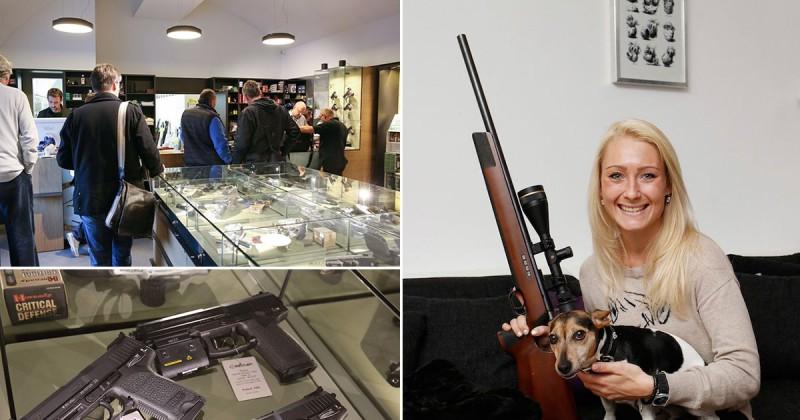 MAIN-Austrian-gun-statistics