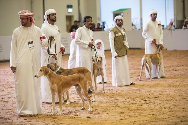 Esta foto es de los EAU donde los perros aparentemente no están prohibidos