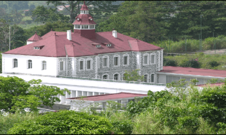Interim Government of Buea