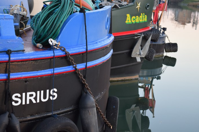 Sirius and Arcadia in Montauban
