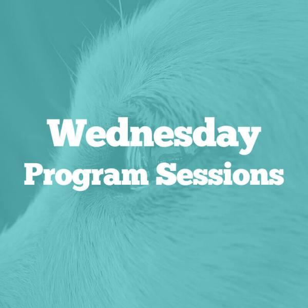 wednesday-programs
