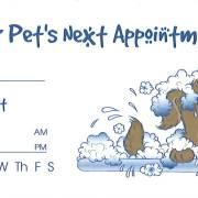appointment_bathtub