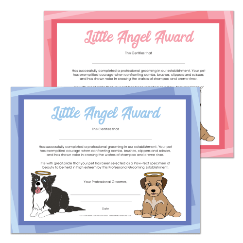 Modern Little Angel Award