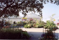 garden party 2010 1