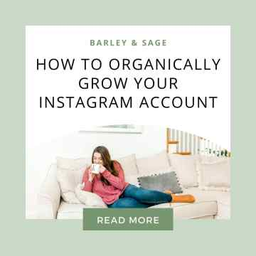 how to organically grow your ig account