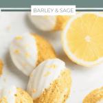 lemon poppy seed madeleines pin