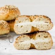 close up shot of sourdough bagels