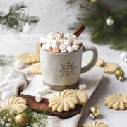 close up shot of homemade cinnamon hot chocolate