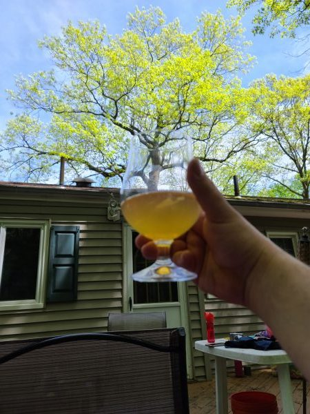Drinking Beer And Staring At Trees