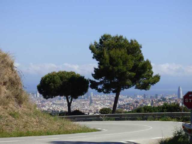 Los dos pinos de la carretera
