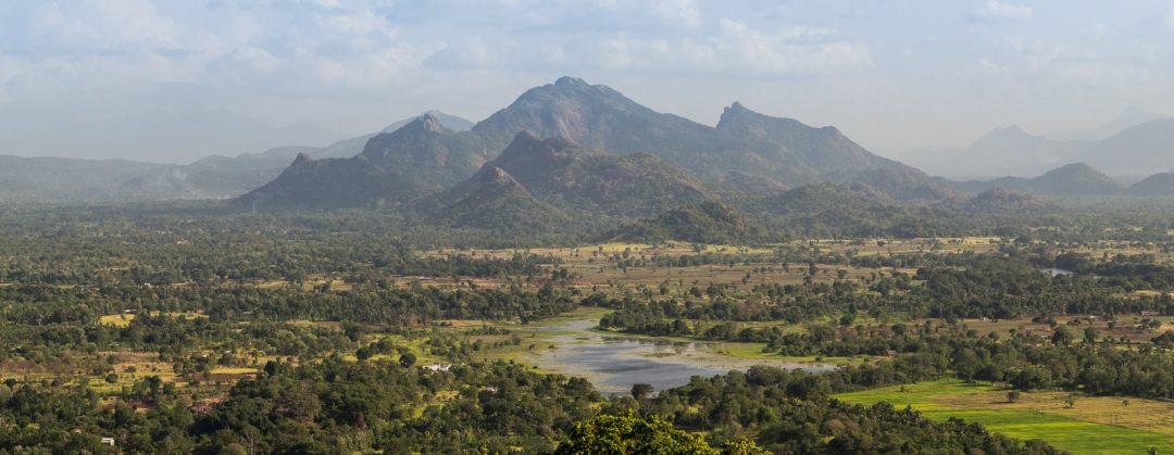 looking south from the summit of Sigiriya