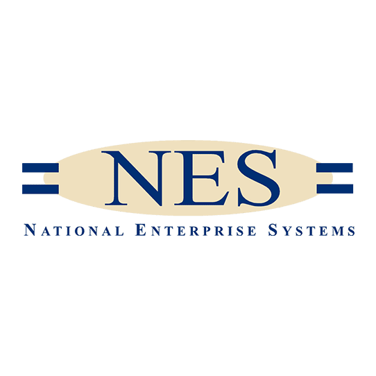 national enterprise systems logo