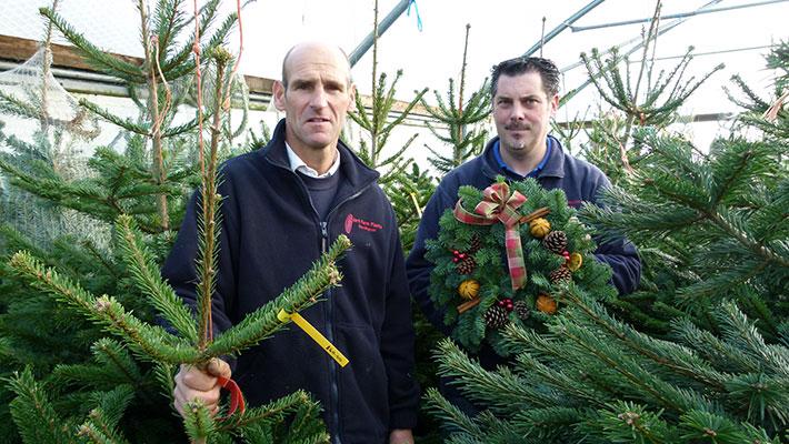 December | Barn Farm Plants Garden Centre