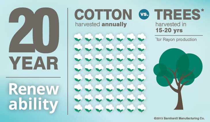Cotton vs. Rayon Infographic