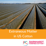 Extraneous Matter in US Cotton