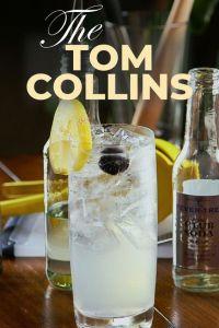 collins kokteyller- kokteyl grupları- tom collins