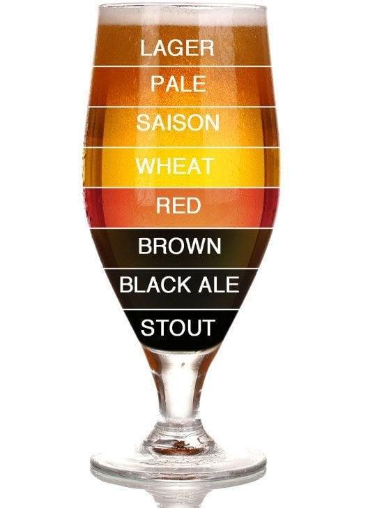 ale lager bira çeşitleri-beer types