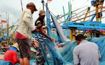 NELAYAN LAMONGAN: Mayoritas warga Pantura Lamongan bekerja sebagai nelayan. Prospek pembangunan perikanan dan kelautan sangat cerah | Foto: IST