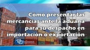 Cómo presentar las mercancías ante la aduana para su despacho en importación o exportación