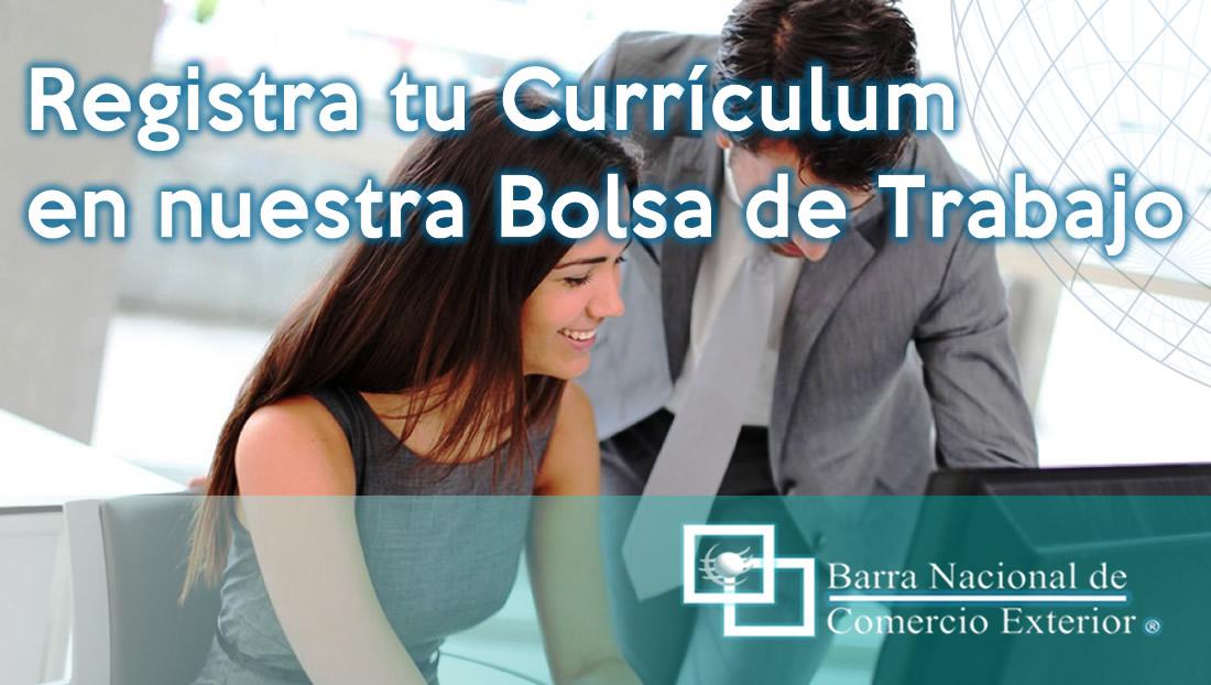 XL_bnce_curriculum