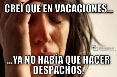 meme_despacho_aduanero