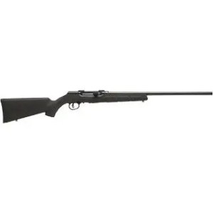 "SAVage A17 17HMR 22"" NS BLACK SYNTHETIC"
