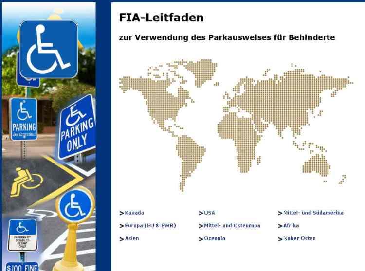 FIA Leitfaden