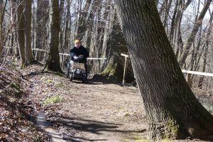 Rollstuhlfahrer im Wald unterwegs