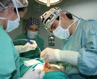 Cirujanoestético