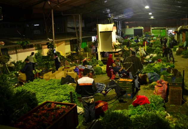 Festival de las hierbas
