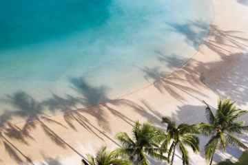 tropical coast with palms and blue sea