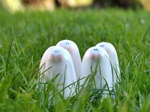 Salero pimentero conejo