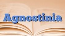 Agnostinia