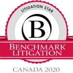 Intellectual Property Litigation Lawyer