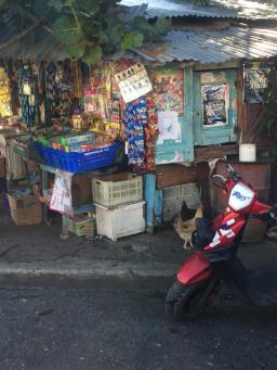 chickens-and-street-shop