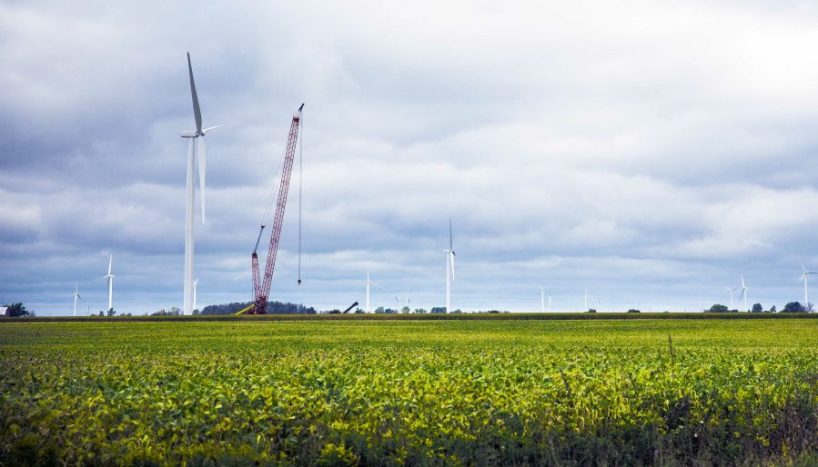 Echo Wind Crops and Turbines