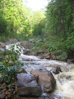 El Parque Nacional Celaque