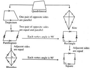 properties of quadrilatral
