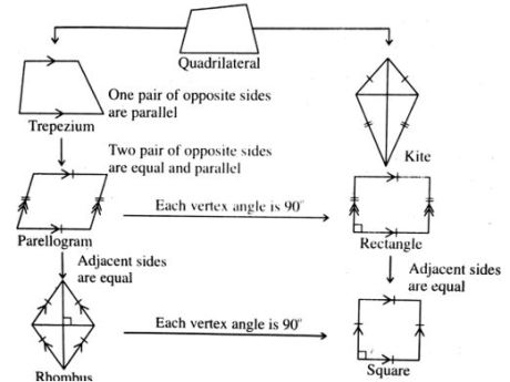 properties of quadrilatral