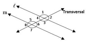 ts ix maths transversal on parallel lines
