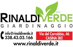 Rinaldi Verde_sito
