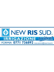 new_ris_2